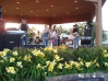 Starwood Band Performing at Music in the Park